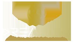 Dreamize Digital Marketing Agency